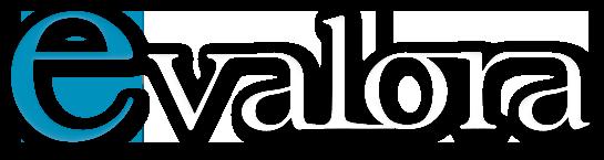 eValora, especialistas en valoración de empresas
